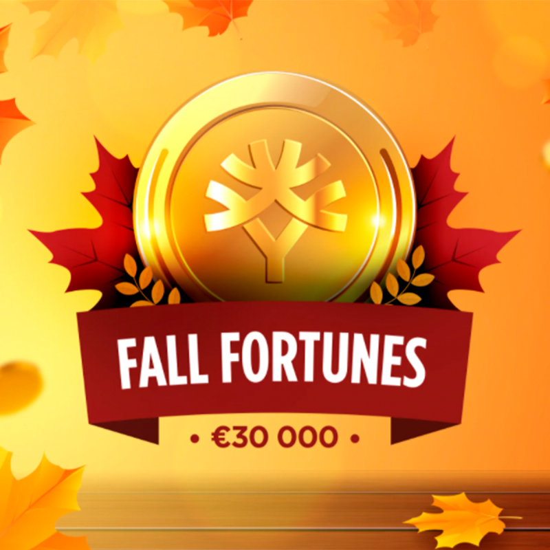 30 тысяч евро за игровыми слотами Yggdrasil в казино на Pokerdom